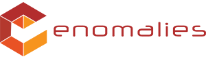 enomalies logo
